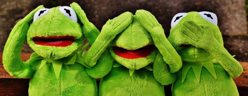 ignorant frogs